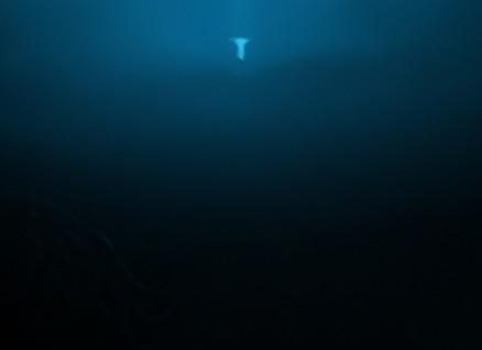 ocean-5.jpeg